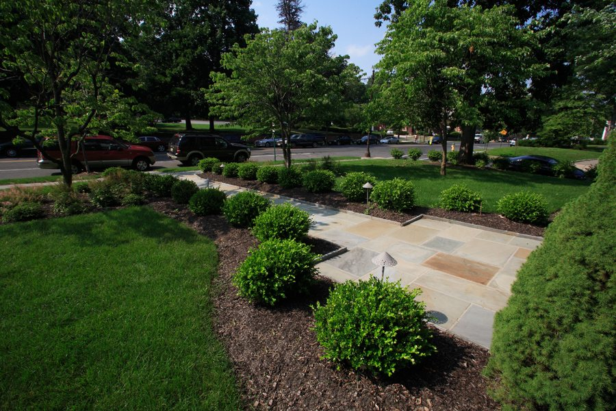 Bluestone Walkway Lined with Boxwoods in Historic Montclair NJ