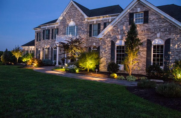Landscape Lighting Accentuating Plants and Walkway