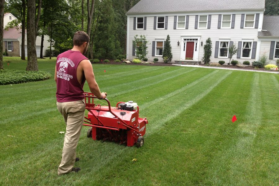 Landscaper Aerating and Seeding a Lawn in Randolph NJ