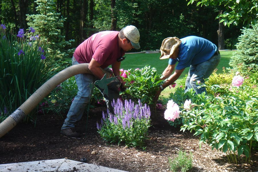 Landscapers Installing Mulch