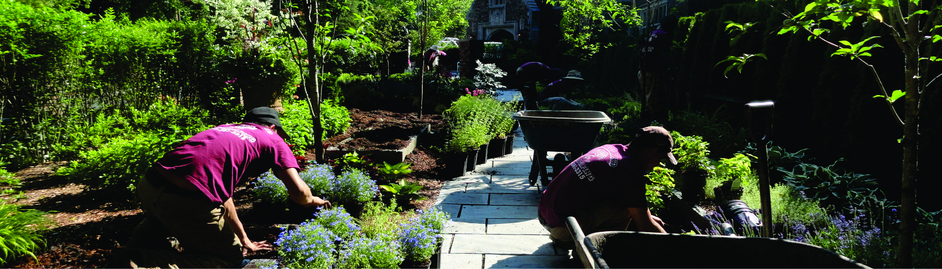 Award Winning Landscape Design