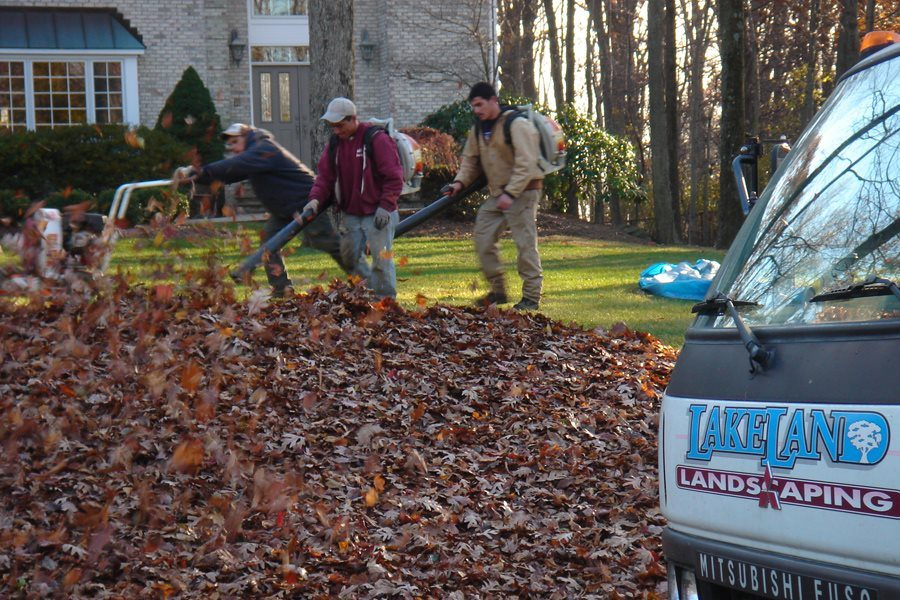 Leaf Cleanup in Mendham NJ
