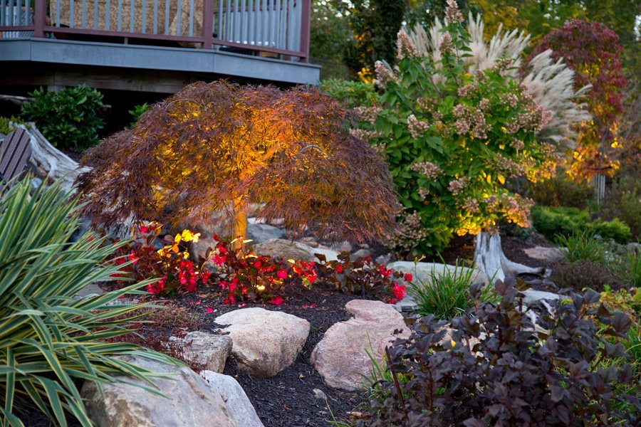 Plantings and gardens photo gallery lakeland landscaping for Landscaping around ponds
