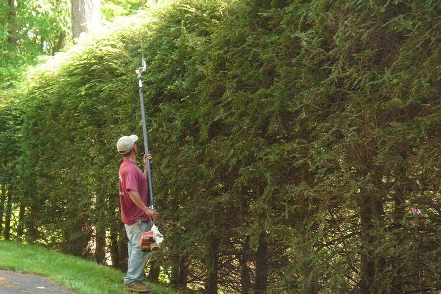 Landscaper Pruning Hedges in Morris County NJ